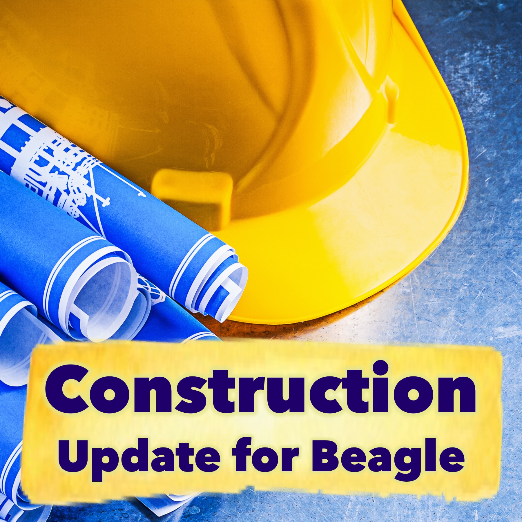 Beagle Construction Update